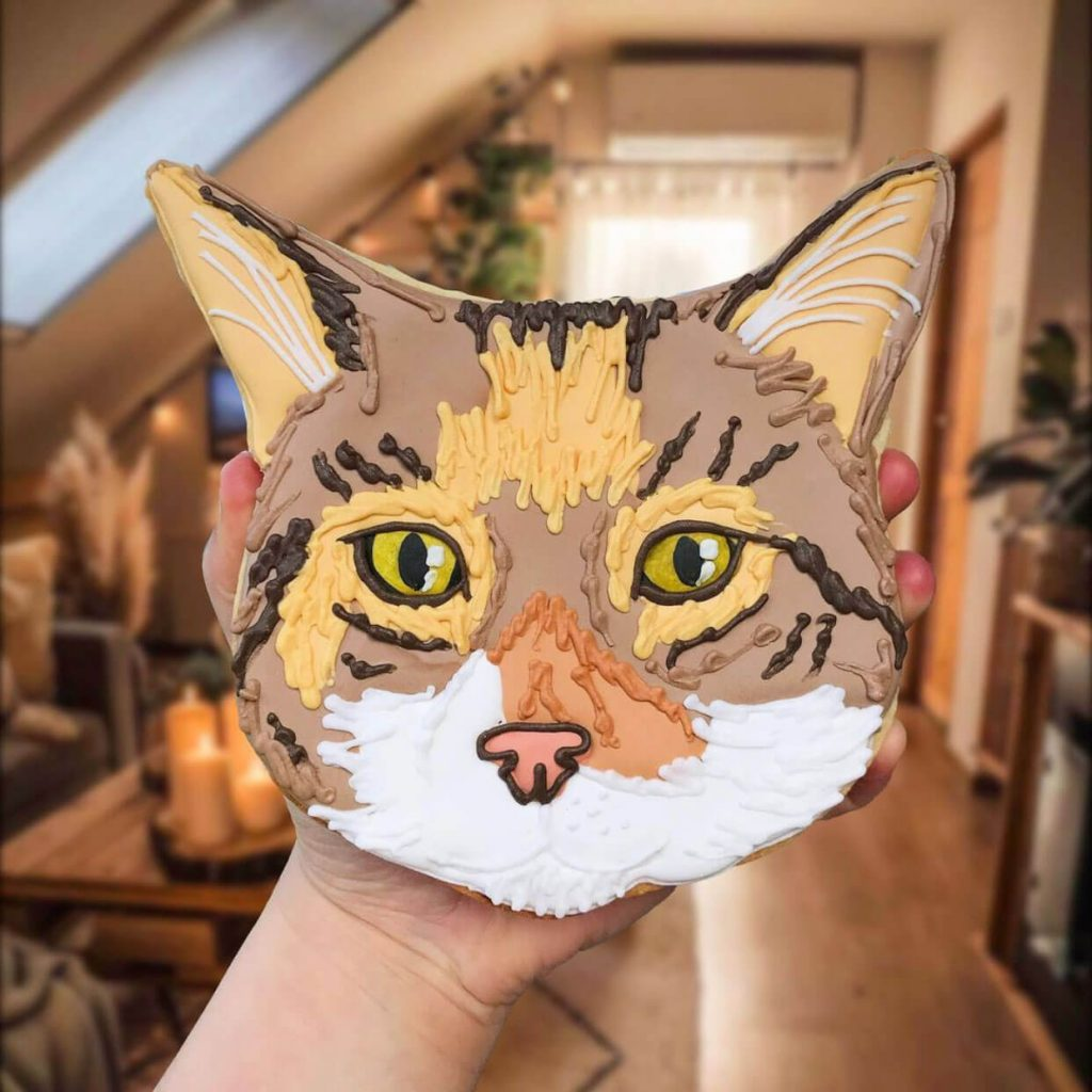 Cat Face Biscuit insta photo