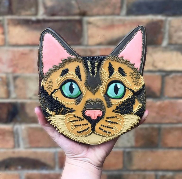 Cat Face Biscuit insta photo2